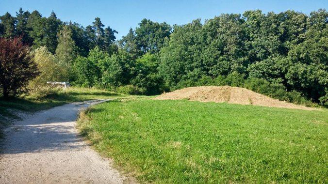 Run, Fatboy, Run (442): Schlittenhügel im Sommer
