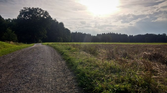 Run, Fatboy, Run #450: Dem Sonnenuntergang entgegen...