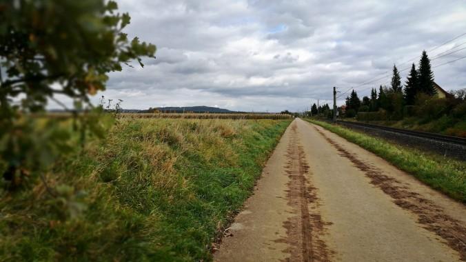 Run, Fatboy, Run (462): Ein Lauf durch herbstliches Wetter...