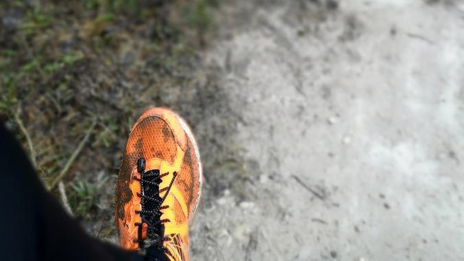 Wenn man vor lauter Matsch den Schuh nicht mehr sieht...