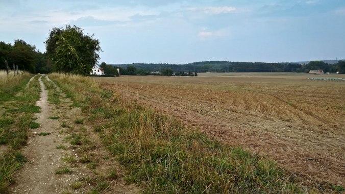 Der Blick schweift wehmütig über die Felder...