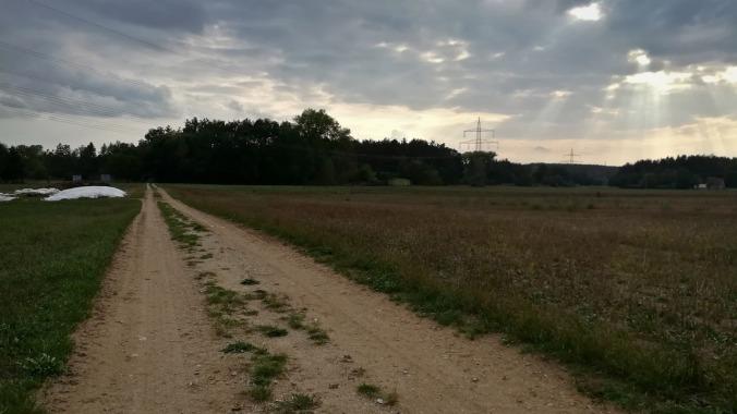 Ein einsamer Läufer durch Wald und Flur...