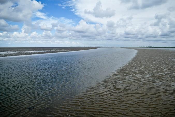Der Priel, ein natürlicher Wasserlauf im Watt