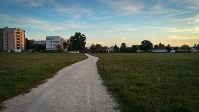 Ein Lauf im letzten Licht des Tages...