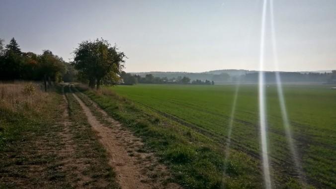 Ein Lauf am Morgen vertreibt Kummer und Sorgen