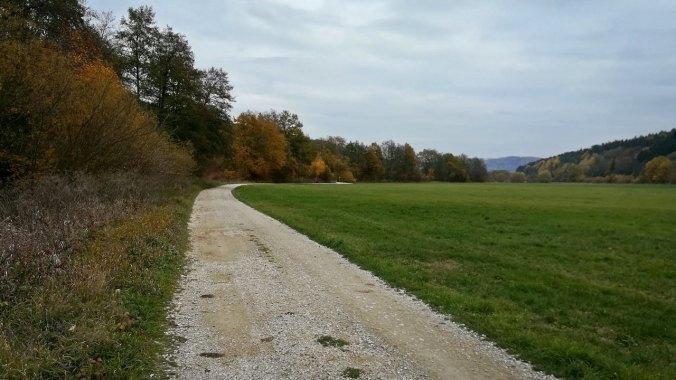Herbstfarben bilden den Kontrast zum grauen Himmel...