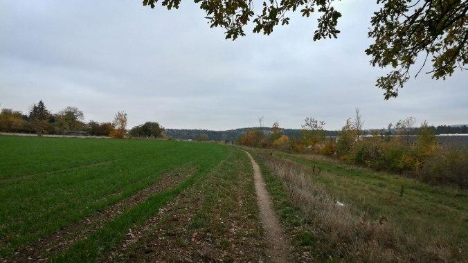 Ein weiterer Lauf durch den heute eher trüben Herbst...