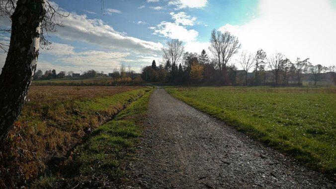 Herrlichstes Laufwetter im November... :)