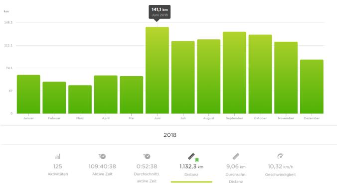 1.132 gelaufene km im Jahr 2018