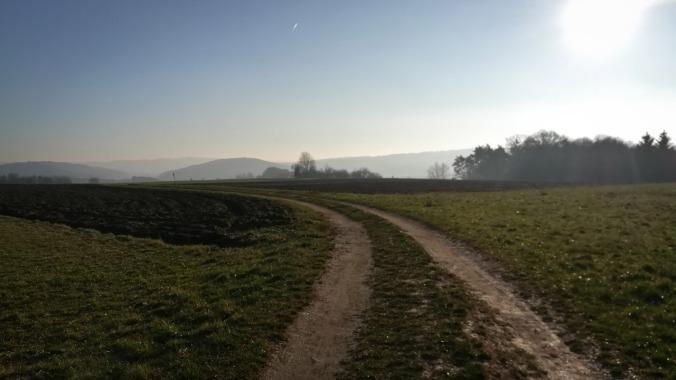 Ein Lauf über die gefrorenen Felder
