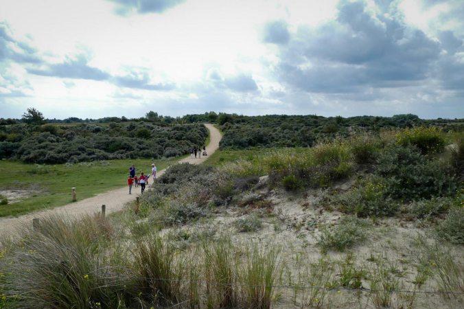 ...und wir mussten nur ca. 1 km durch die Dünen bis zu unserem Ferienpark laufen