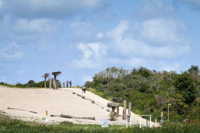 Der idyllische Aufgang in die Dünen bis zum Strand