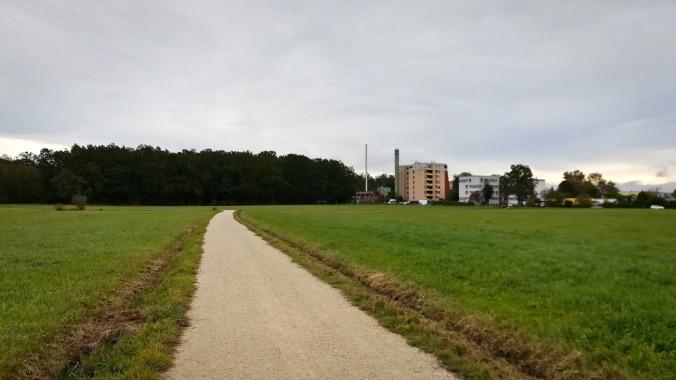 Laufen bei knackigen 3 °C