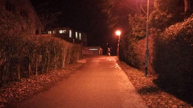 Lauf durchs Rotlichtviertel?