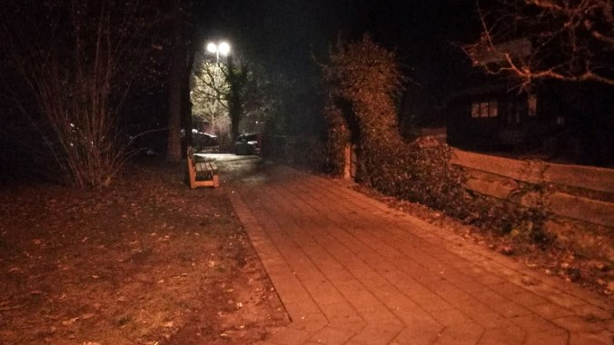Ein frostiger Nachtlauf