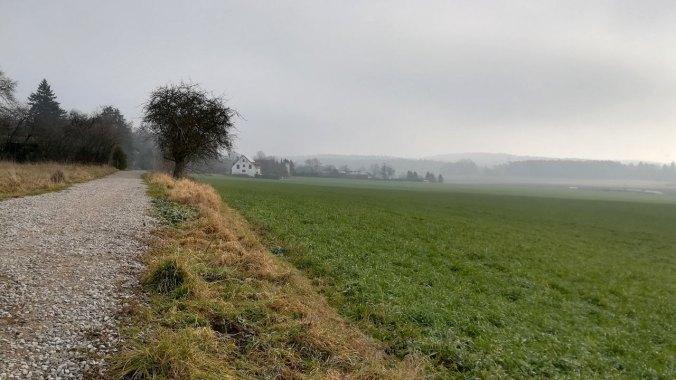 Ein lauf durch die nebelige Kälte