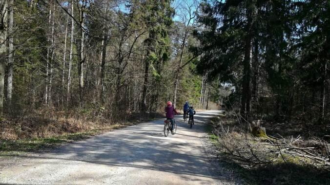 Eine Radtour durch die nahe gelegenen Wälder