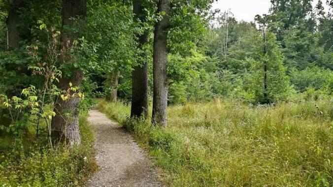 Wenigstens der Wald war idyllisch
