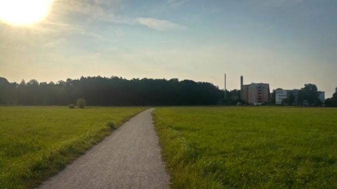 Schon wieder ein Lauf in den sonnigen Morgen...