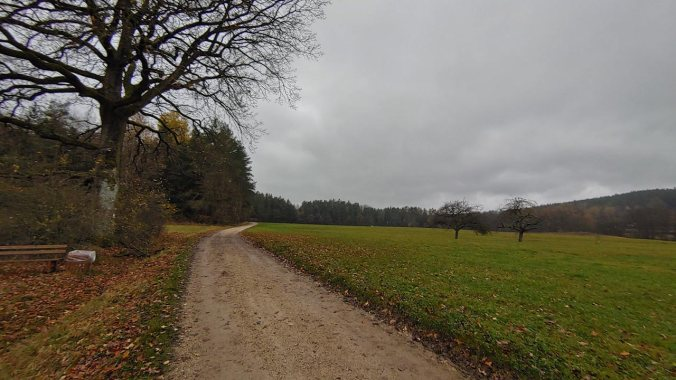 Richtiges Herbstwetter beim Laufen