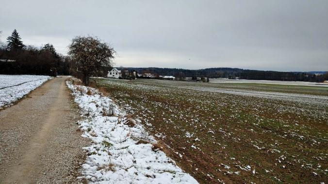 Heute waren die Wege überall ziemlich glatt gefroren