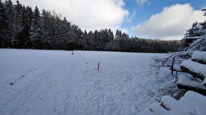 Ein Lauf durchs Winterwunderland