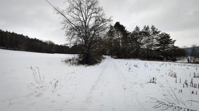 Ein Lauf durch den verschneiten Winterwald