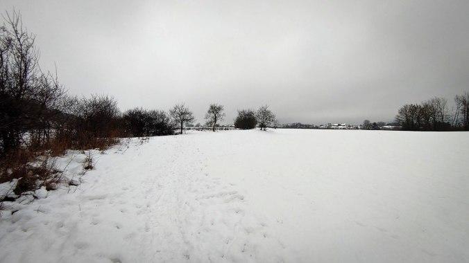 Ein weiterer Lauf durch den Schnee