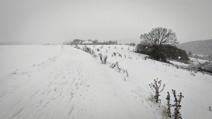 Heute voll in ein Schneegestöber gekommen...