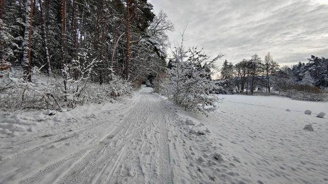 Ein Lauf durch das Winterwunderland