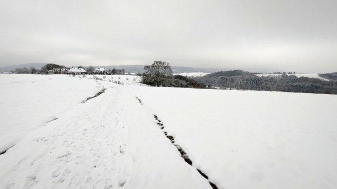 Heute war mir der Schnee auf dem weiten Feld fast zu grell