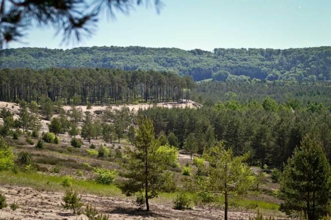 Ein Blick zu unserem Ausstieg aus der Sanddüne