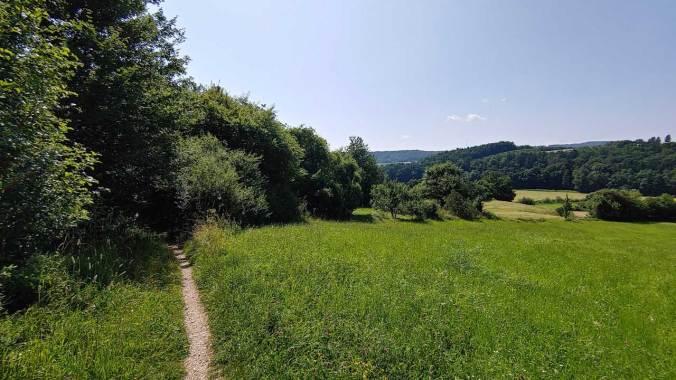Sonnige Trails in der nahen Umgebung