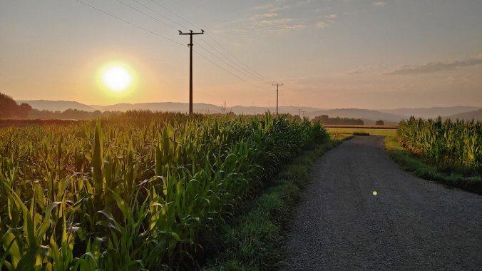 Sonnenaufgang über den Feldern