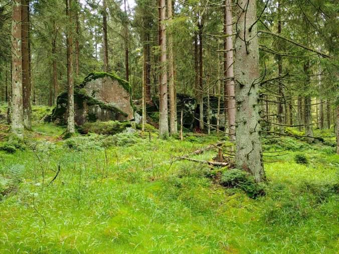 Große Steinbrocken mitten im Wald wirken wie Spielzeug von Riesen