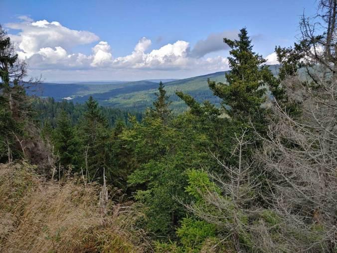 Der Ausblick vom Weißmainfelsen